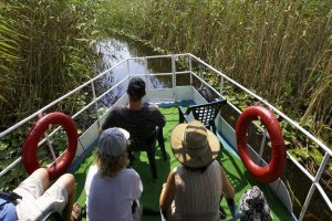 Tourists on boat in Danube Delta - exploring for photography and birdwatching