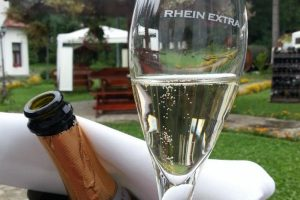 Rhein Wine Cellar 01